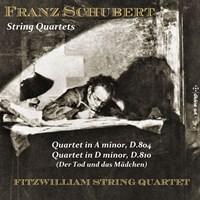 SCHUBERT: String Quartets Fitzwilliam String Quartet