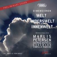 PETERSEN: Dimensionen Petersen/Lademann/Radicke