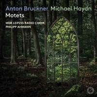 BRUCKNER/M.HAYDN: Motets MDR Leipzig Radio Choir/Ahmann
