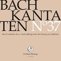 Bach Kantaten No°37 J.S. Bach-Stiftung/Lutz,Rudolf